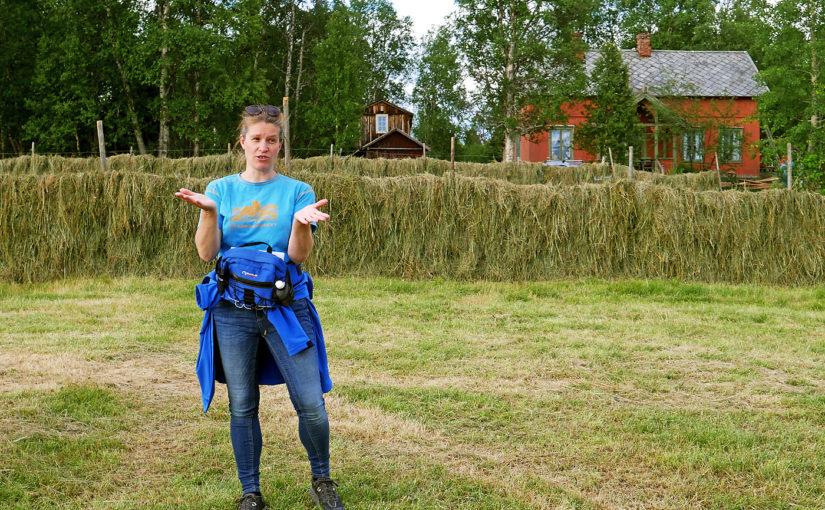 På setertur med Ingeborg Anna